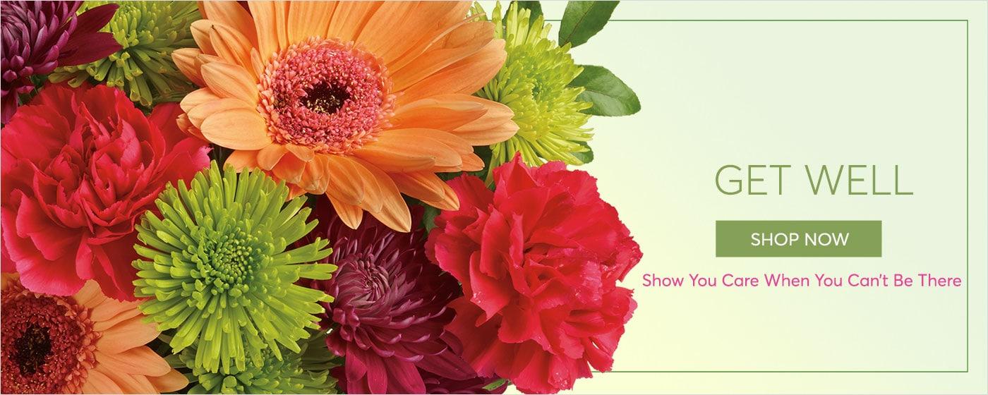 Obtenez la livraison bonne de fleur, montrez-toi le soin quand vous ne pouvez pas être là