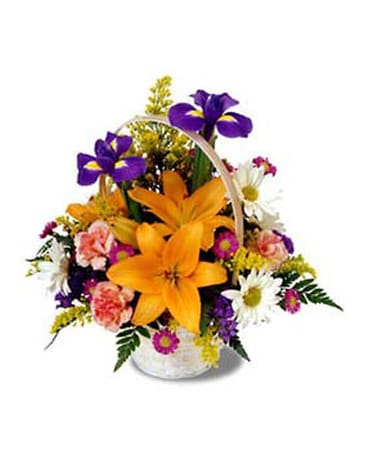 Get Well Flowers Delivery Cohasset Ma Exoticflowersbiz