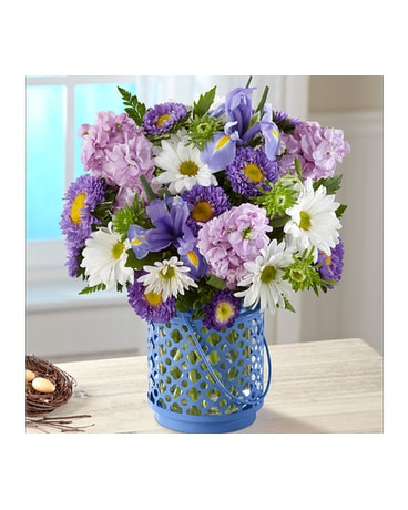 Get Well Flowers Delivery El Paso Tx Executive Fleurs