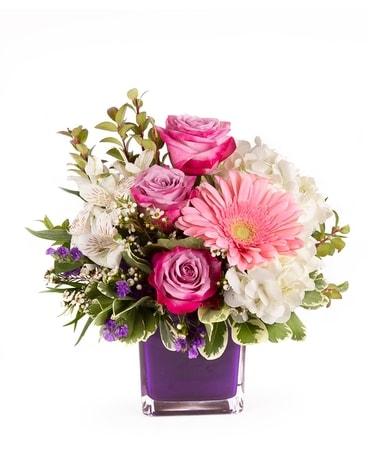 Get Well Flowers Delivered Dans Flushing Mi Flushing